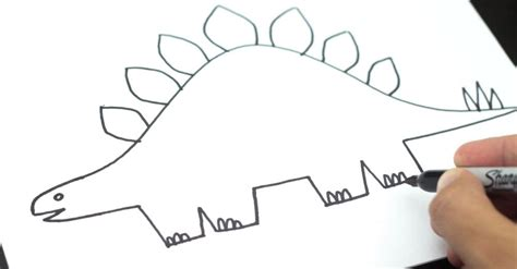 how to draw a stegosaurus for younger artists art for