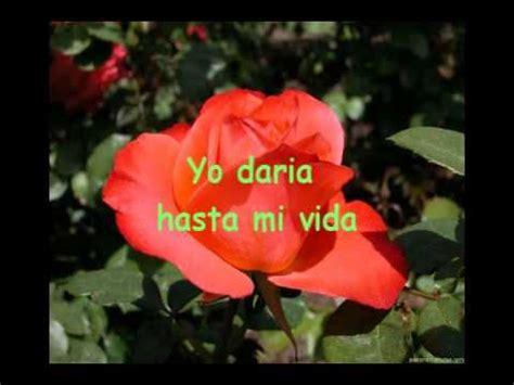 imagenes rosas mas bellas mundo la flor mas bella del mundo youtube
