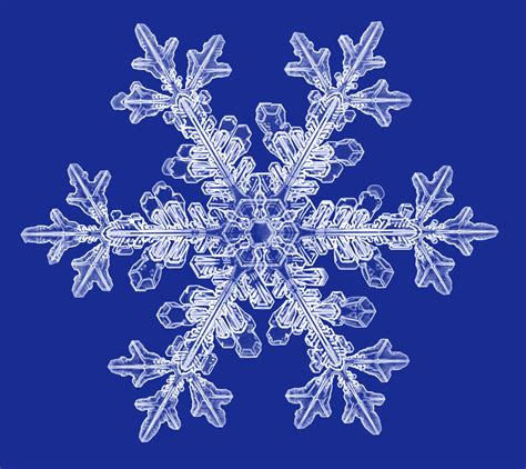 snowflake photographs snowcrystals com