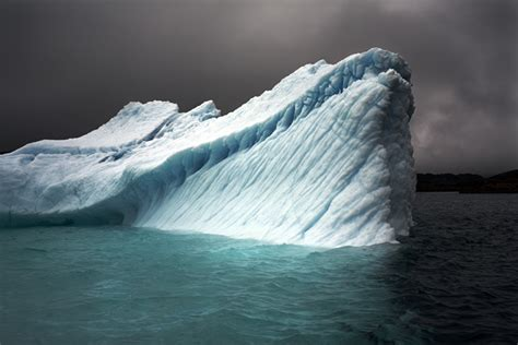 icebergs glaciers revised edition books breaching iceberg greenland by camille seaman susan