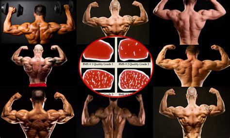 alimentazione per la definizione la dieta per la massa nel bodybuilding project