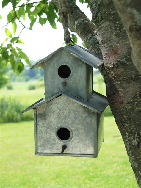 Permalink to Building Bird Houses Images