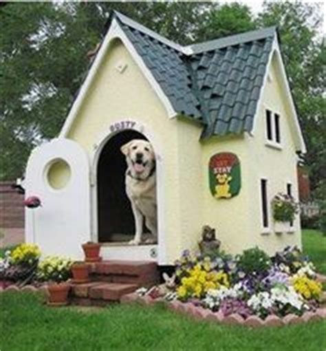 the biggest dog house in the world protecting your outside dogs from the cold large dog house