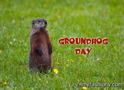 groundhog day hd popcorns groundhog day wallpaper images 2016 2017 b2b fashion