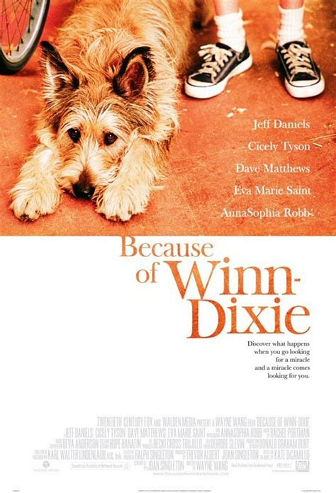 because of winn dixie pictures from the book 301 moved permanently