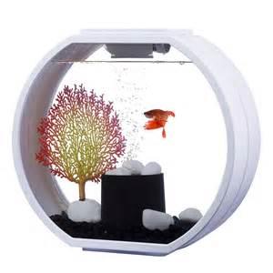 aquarium deco o mini 10 litres blanc aa animalerie