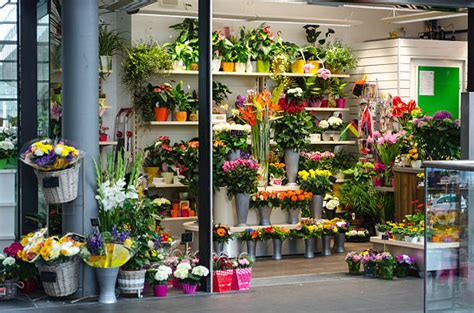Flower Shop by Royalty Free Flower Shop Pictures Images And Stock Photos