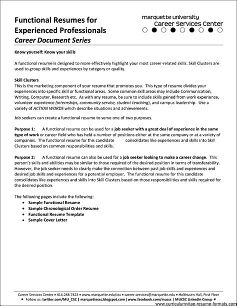 Professional Experience Resume by Resume Format For It Professional Experience Free