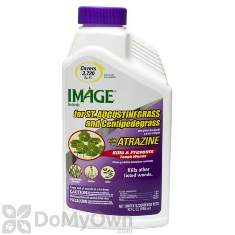 Spray For Carpet Beetles by Image Herbicide For St Augustine Grass And Centipede