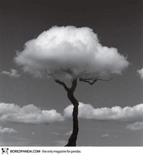 Imagenes Artisticas Blanco Y Negro | fotos artisticas de paisajes en blanco y negro buscar