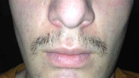 full beard growth progress beard board