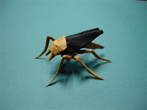 Insect Origami - the world s best photos of bugs and origami flickr hive mind