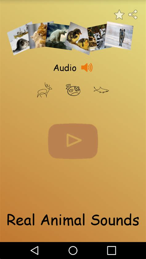 animal sounds for animal sounds real animals real animal sounds android apps on play