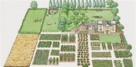 one acre spread how many homestead layout acre homestead layout and the 1 acre farm