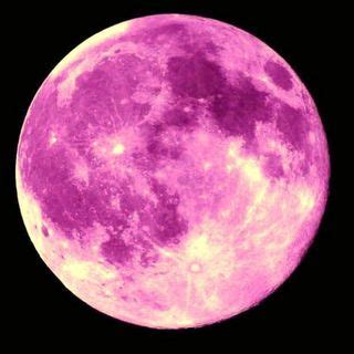 pink moon magical pink moon a meditation for the moon en lunar