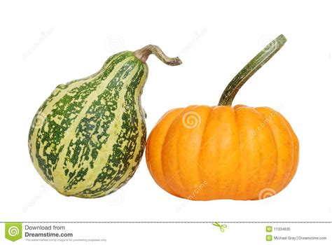 Green Gourd L by Green And Orange Gourd Stock Image Image Of Food Autumn