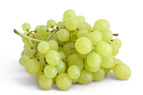 Table Grapes file table grapes on white jpg