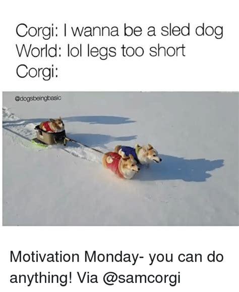 memes  motivational monday motivational