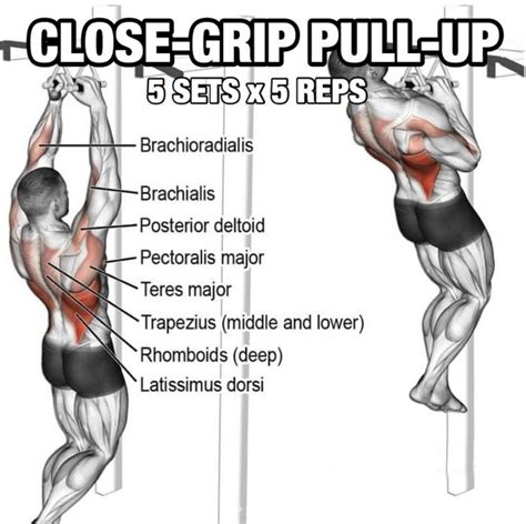 Grip United Grip Anatomy back workout but slightly different part 5 grip pull up yeah we workouts