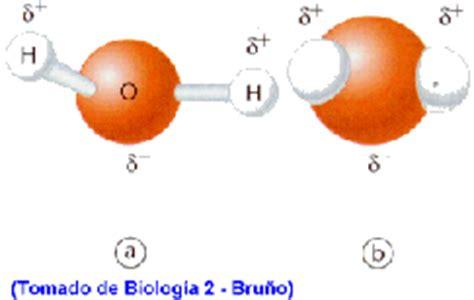 lade al sodio estructura de la mol 233 cula agua