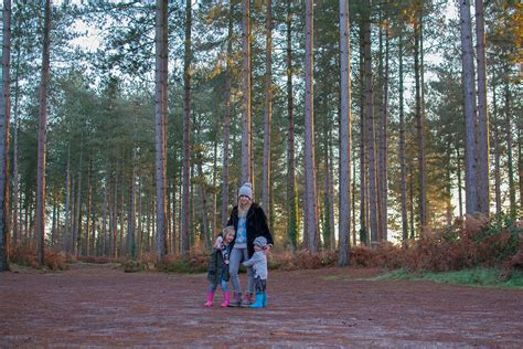 go ape real christmas trees and meeting father christmas