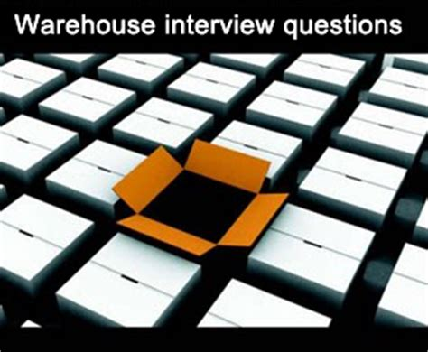 free sle questions questions warehouse