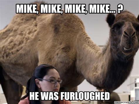 geico camel furloughed