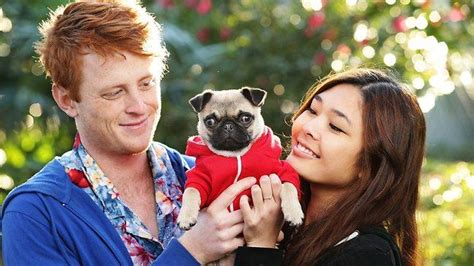 poncho the pug poncho the sydney pug finds fame after marketing by savvy owners