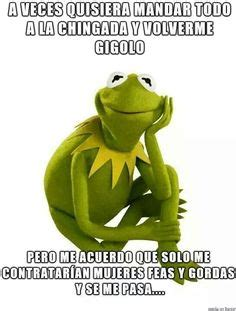 imagenes de la rana rene chistosas de amor 1000 images about memes rana rene peggy on pinterest