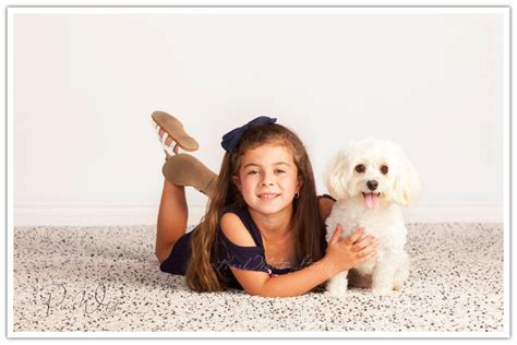 my pet connection inspirational tails of adoption books abnewswire press release distribution service 50 tails