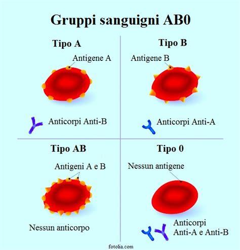 alimentazione per gruppo sanguigno b positivo dieta gruppo sanguigno dr d adamo e mozzi