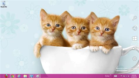 Cute Kitten Themes For Windows 7 | cute cats windows 7 and 8 theme ouo themes