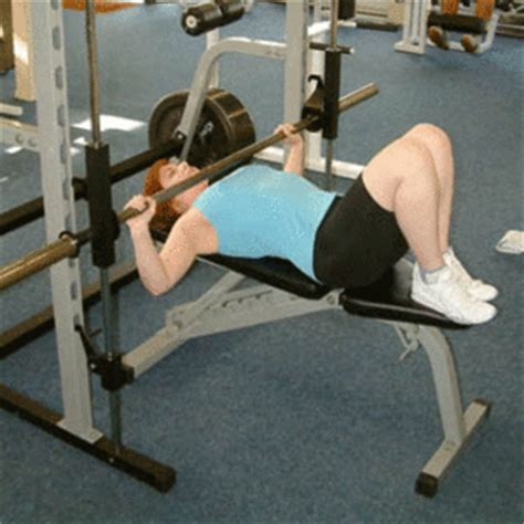 bench press lower back list of weight training exercises wikipedia