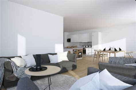 apartment living room pictures scandinavian parisian apartments in white