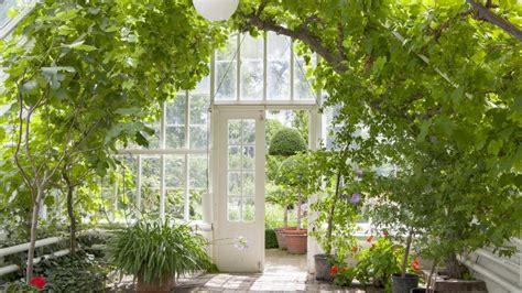 great greenhouse ideas   yard angies list