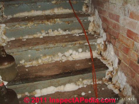 basement mold auto forward to correct web page at inspectapedia