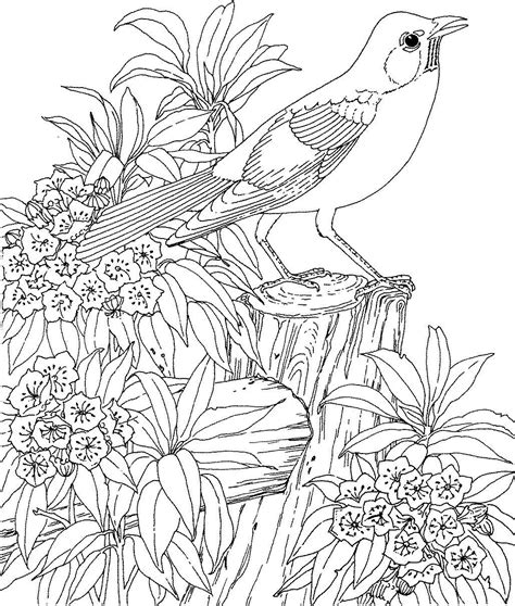 coloring pages for adults nature printable newpictures177 beautiful coloring pages for adults mom