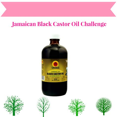Jamaican Castrol Oil 6 Month Results | jamaican black castor oil challenge growing 4 inches of