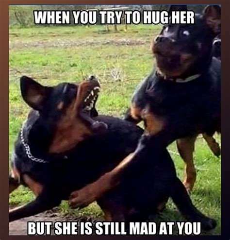 Baby You Still Mad Meme - when you try to hug her but she is still mad at you