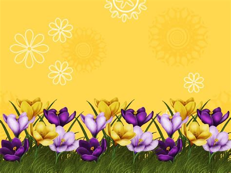 Bordir Flower 169992 Set 3 In 1 Quality Semiori 1 flower border powerpoint backgrounds ppt