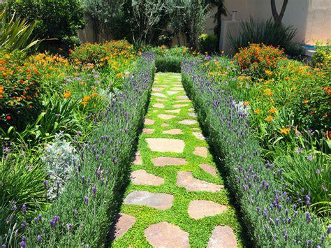 imagenes de jardines exteriores pequeños las 10 mejores plantas de exterior para jardines modernos