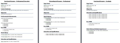 chronological resume template format and exles