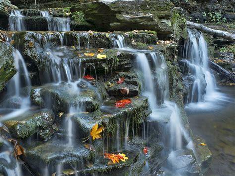 Kitchen Creek by Kitchen Creek Ricketts Glen State Park Pennsylvania