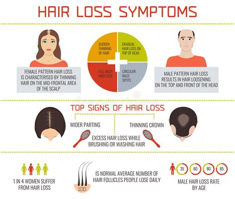 how to strengthen hair follicles in females over 40 hair loss symptoms infographics stock vector image 71756051
