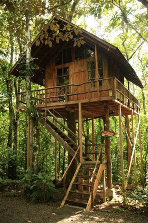 treehouse vacations best 25 treehouse hotel ideas on pinterest tree house
