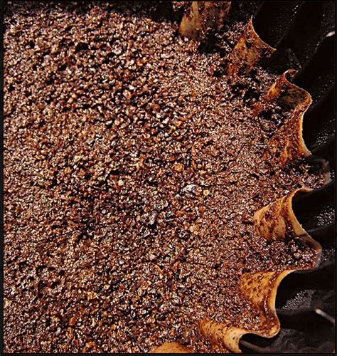 Coffee Grounds In Garden by 5 Easy Tricks To Use Around The House Homejelly