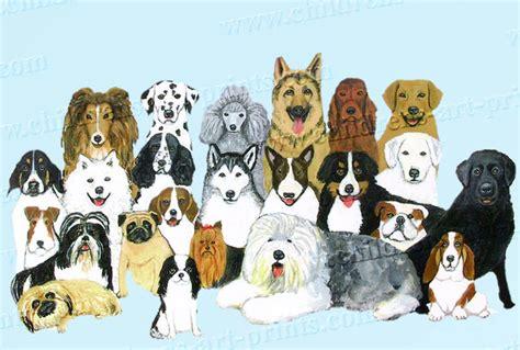 puppies puppies artist mimi dogs n puppies