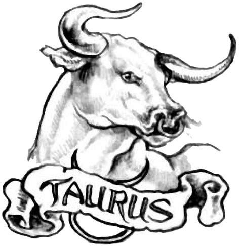 taurus bull tattoos bull design ideas