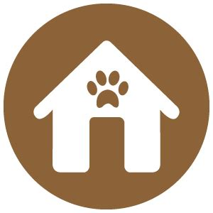 boarding houses for dogs houston dog training pet salon doggy day care