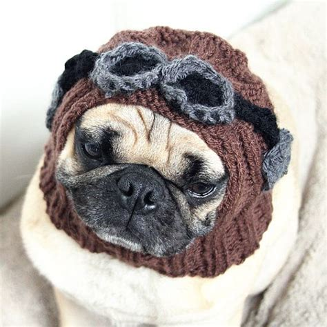 goggles for pugs hat aviator hat with goggles the original pug hat